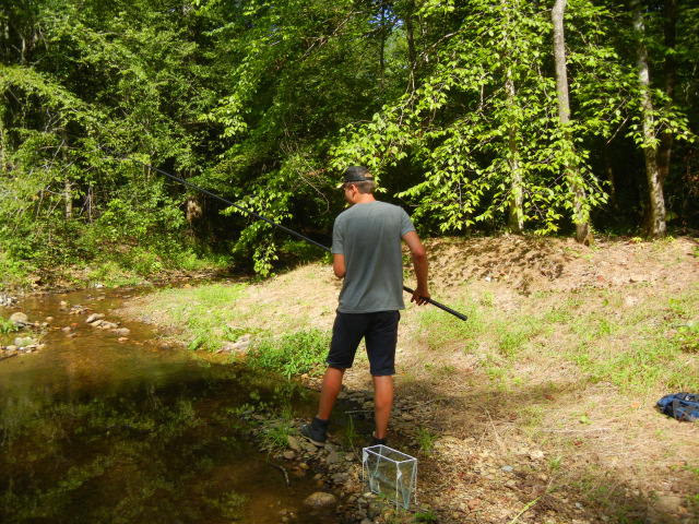 Micro fishing along a stream in the Chattahoochee National Forest